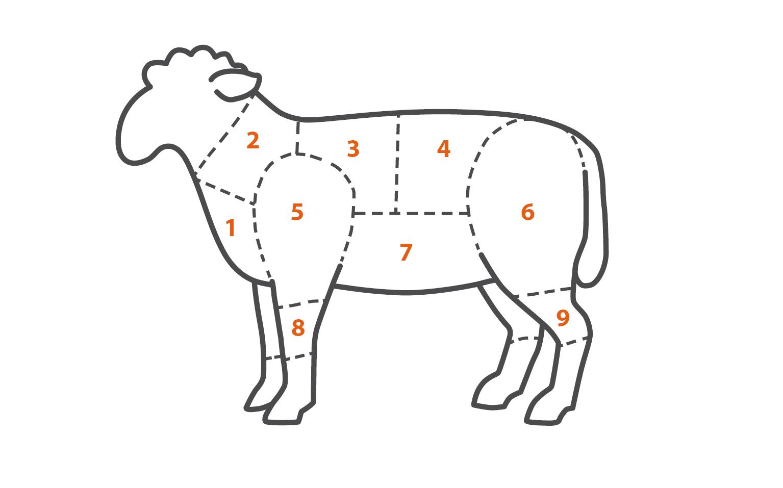 Fleischteile Lamm